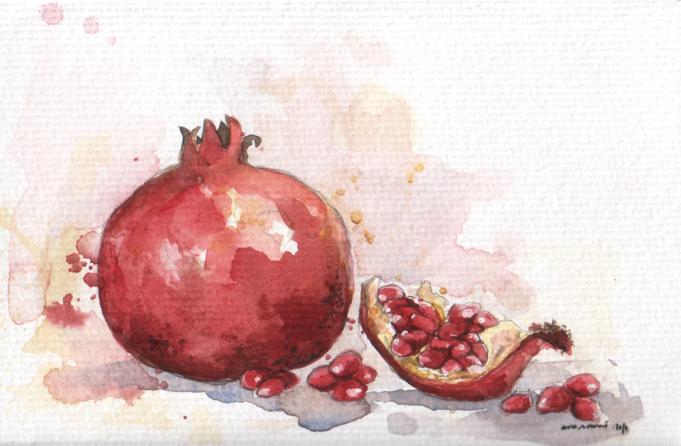 ana romao - watercolor of a pomegranate