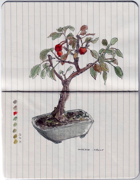 ana romao - sketch of a bonsai apple tree