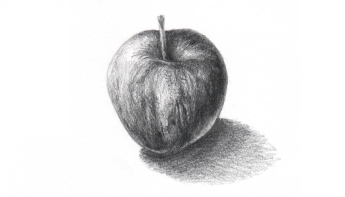 anaromao_cientific_illustration_apple_frontimage