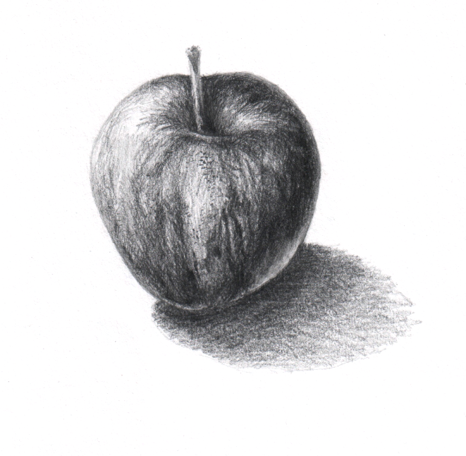 Scientific illustration of an apple with pencil